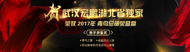 荣誉鉴实力| 武汉宏鹏湖北省独 家连续获北大青鸟年度大奖