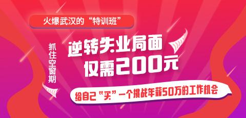 """北大青鸟200元""""IT特训营"""""""