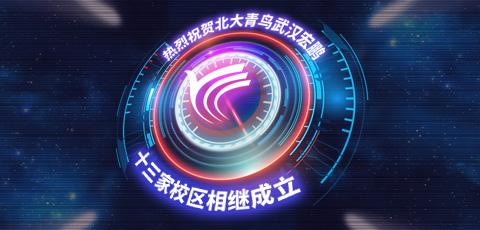 武汉宏鹏第九家校区北大青鸟徐东校区成立