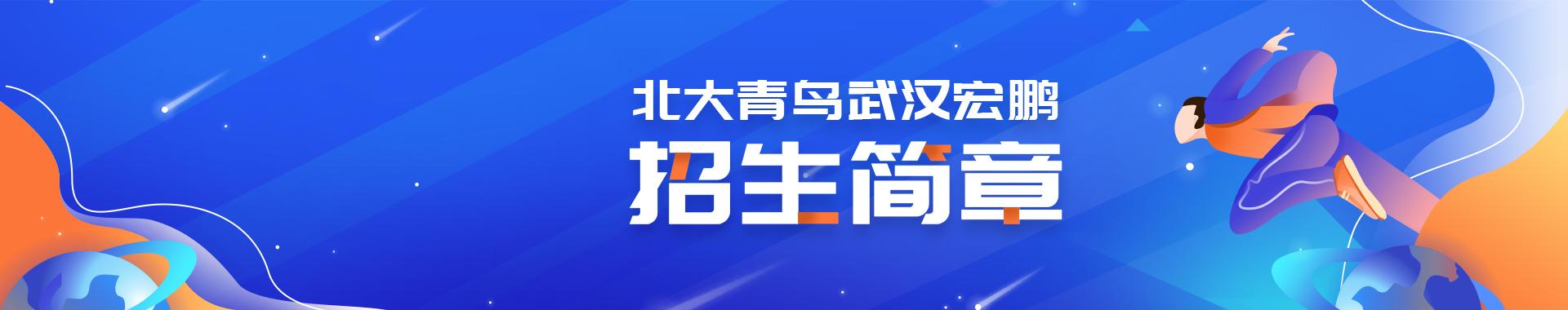 北大青鸟2019年招生简章