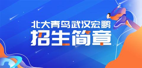 北大青鸟鲁广校区2019年招生简章